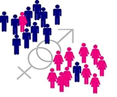Підбито підсумки гендерного моніторингу регіональних медіа 2019 р.