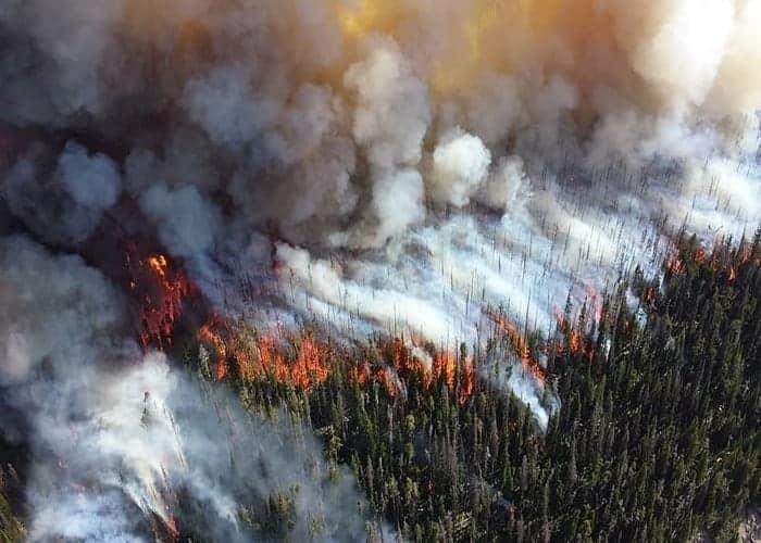 Чому екологічна журналістика – це ризикова справа?