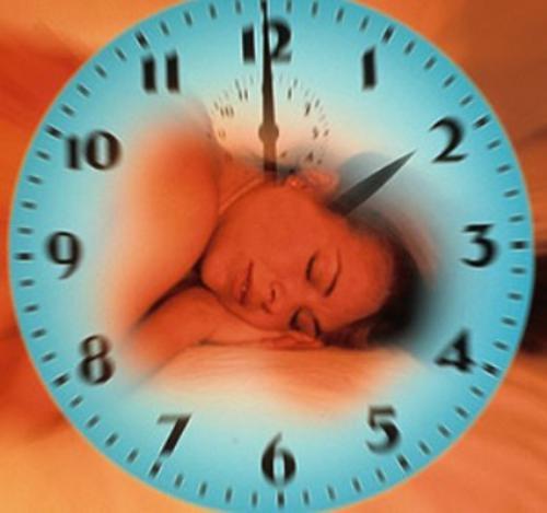 Навіщо потрібно спати, або як вижити в потоці інформації