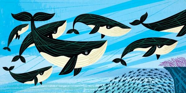 Дружба «акул» та «китів»: як ГО співпрацюють зі ЗМІ